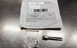 澳洲多地收到不明種子包裹 專家警告勿種植