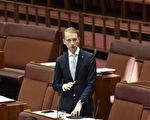 澳议员:反击中共干预 澳洲走在世界前列