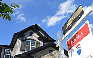7月卡城獨立屋銷售增長