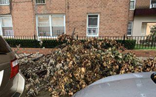 眾議員寇頓批市長用錢不當 垃圾堆積