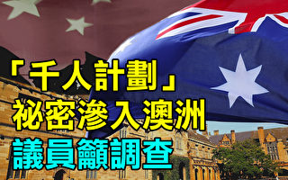 中共千人計劃祕密滲入澳洲 議員籲調查