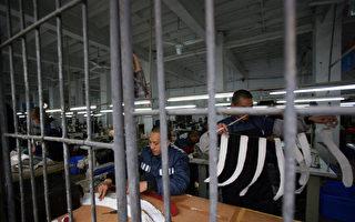 """中共监狱奴工产业  人""""像牲畜一样干活"""""""