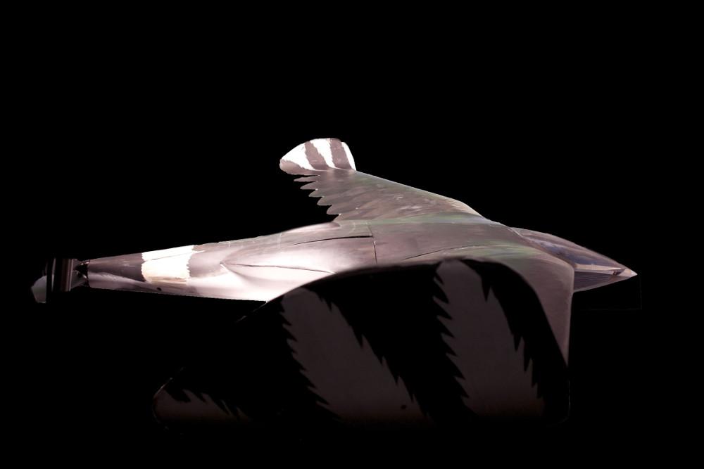 CIA解密:冷戰時曾規劃鳥形核能無人機