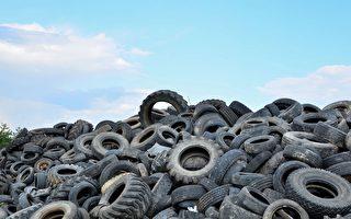 新研究用旧轮胎铺路