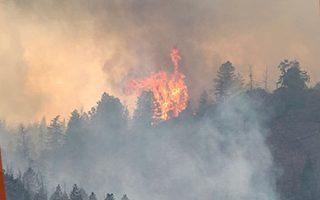 安省紅湖鎮森林野火 居民撤離