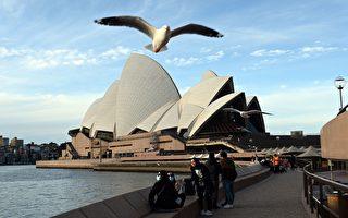 旅游业专家:澳洲或于明年年中放宽边界