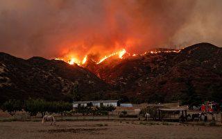 """南加州""""苹果大火""""继续蔓延 8千人撤离"""