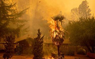 美国山火影响卑诗空气 专家:对海洋有利