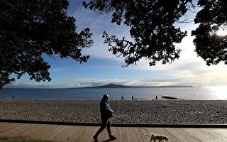 疫情以来新西兰投资签证申请数量激增