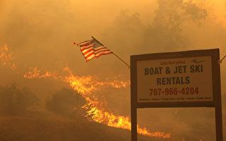 加州渐认同川普批评  与联邦合作清理林木