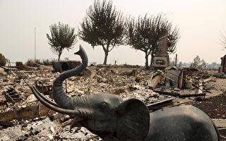 旧金山湾区山火地区数以万计居民 不知何时能回家