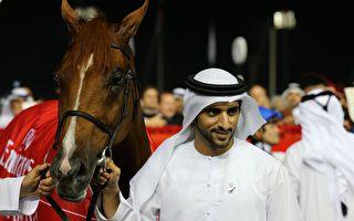 迪拜王子短期内不会驾爱车了 原因超暖心