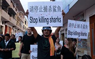 蓬佩奥:美支持厄瓜多尔 中共须停非法捕鱼