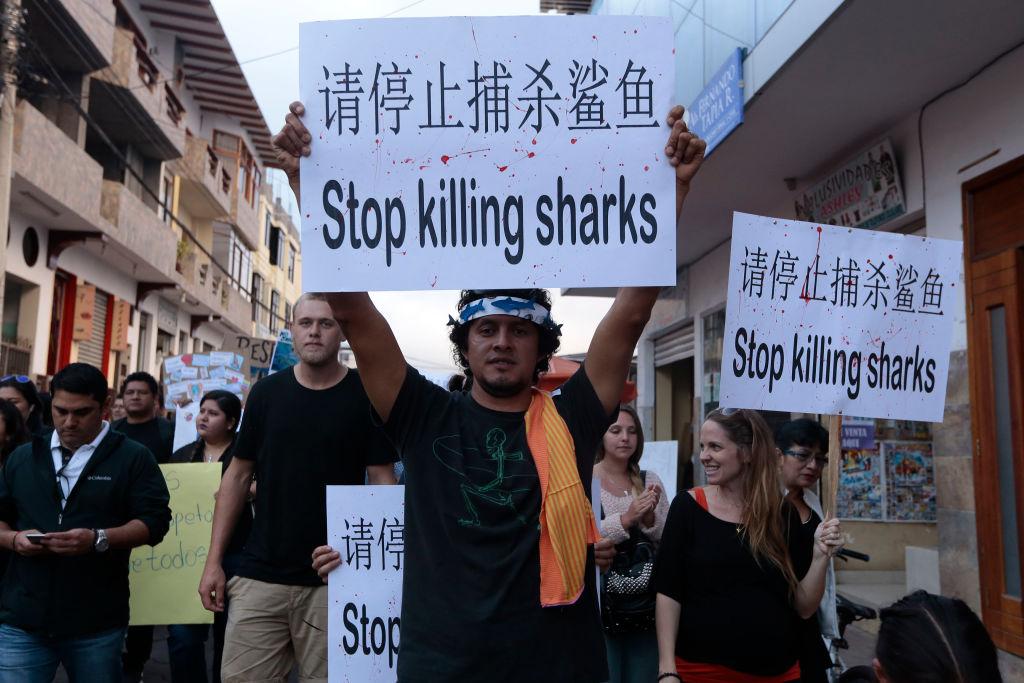 蓬佩奧:美支持厄瓜多爾 中共須停非法捕魚