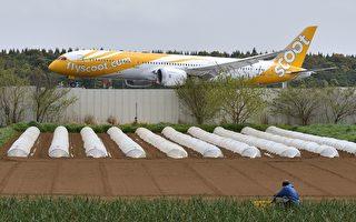 日本農民在成田機場種菜幾十年 就是不搬走