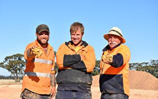 价值35万澳元 澳洲淘金者挖出两枚大金块