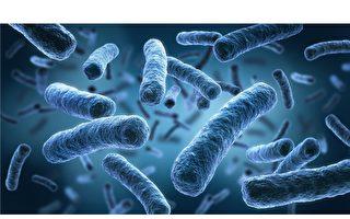 科学家成功复活一亿年前细菌