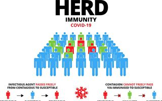 NIH预测:美国一些地方快达到群体免疫了