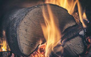疫情导致木柴需求激增 维州供应紧张