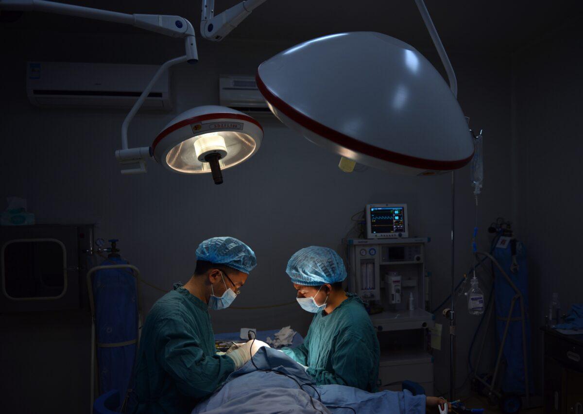 十天四顆心臟 中共器官按需供給引憂