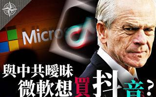 【十字路口】MicroSoft买抖音?纳瓦罗暗指不适合