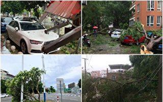 【一线采访】福建漳州养殖户:台风袭击惨况