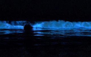 圣塔克鲁兹海浪在夜间闪烁着蓝光