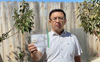 硅谷圣荷西居民也收到神秘中国种子