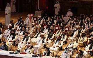 阿富汗塔利班历史性和平会谈 全球发声支持