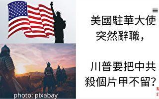 夏林視角(13):美大使辭職 崔大使或走人?