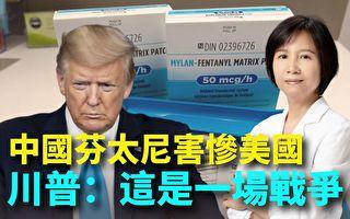【紐約調查】中國芬太尼害慘美國 川普:這是戰爭