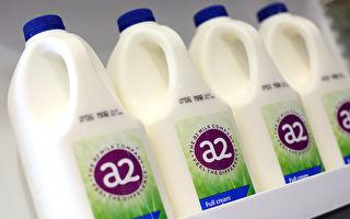 疫情封鎖斷華人代購銷售渠道 a2牛奶受重創