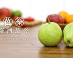 想念臺灣最夯水果「芭樂」嗎?快來「2020 臺灣蔬果節」解鄉愁!