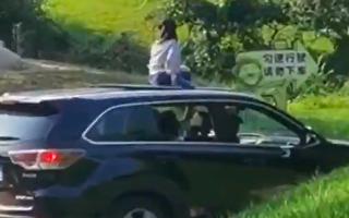 忘記教訓?小孩坐車頂游北京野生動物園