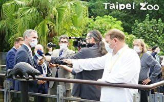 布拉格市长参访动物园 北市将借殖2只穿山甲