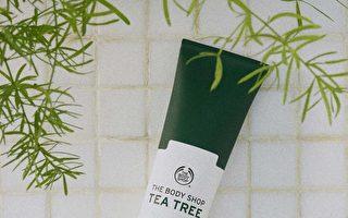 茶树净肤四步骤  改善问题肌肤