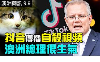 【澳洲簡訊9.9】抖音傳播自殺視頻 澳洲總理很生氣