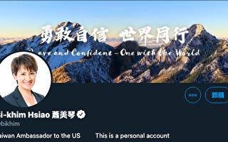蕭美琴推特更名 「胡錫進」推文遭網民嗆爆