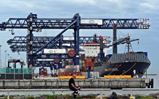 工會暫停行動 悉尼碼頭開始清理積壓貨物