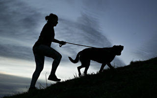 Sport NZ敦促人們重新開始定期運動
