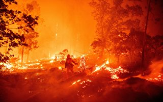 南加州大火波及7000英畝 竟由一場派對釀禍