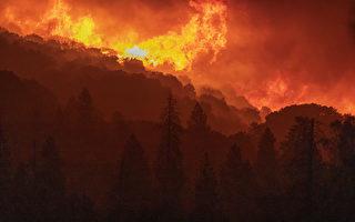 5大因素导致加州2020野火史无前例