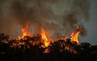 山猫大火逼近 亚市部分地区强制疏散