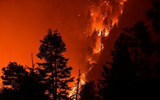 山猫大火达50%围控 南加爱迪生设备遭调查
