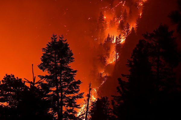 山貓大火達50%圍控 南加愛迪生設備遭調查
