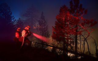 山貓野火焚毀52建築 控火線倍增至38%