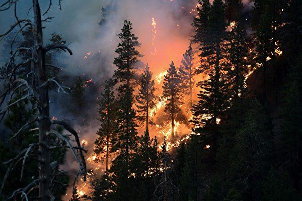 组图:美国加州野火蔓延 逾6400座建筑被毁