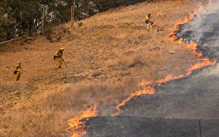 北加州玻璃大火 火情进度更新