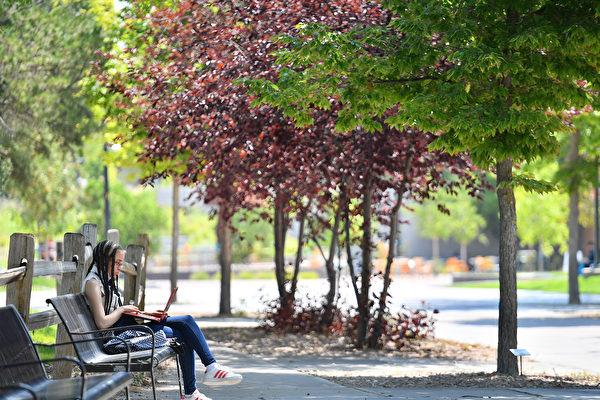 网络远距上课 加州大学生反映褒贬不一
