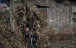 譚笑飛:寫在中共「全民脫貧」之前